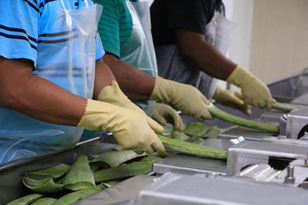 Impartirán 20 cursos para el autoempleo en Tamaulipas