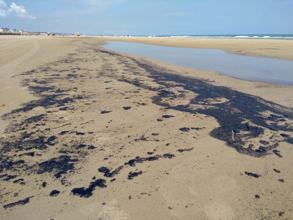 PEMEX y Petrofac realizan labores de limpieza en Playa Miramar