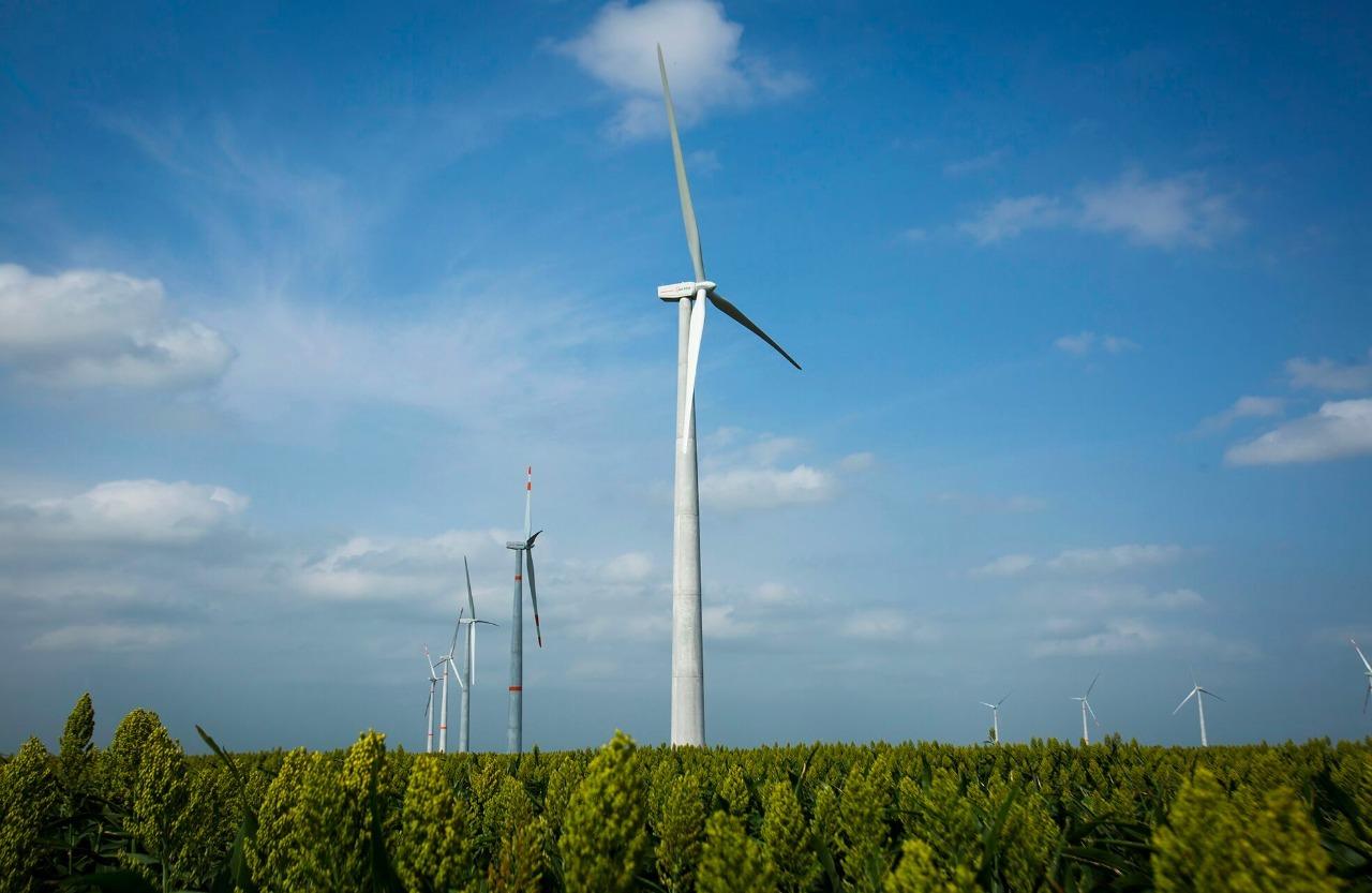 Iniciarán operaciones 5 parques eólicos en 2019