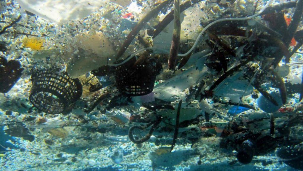 CONTAMINAN EL RIO PÁNUCO 75 toneladas anuales de basura