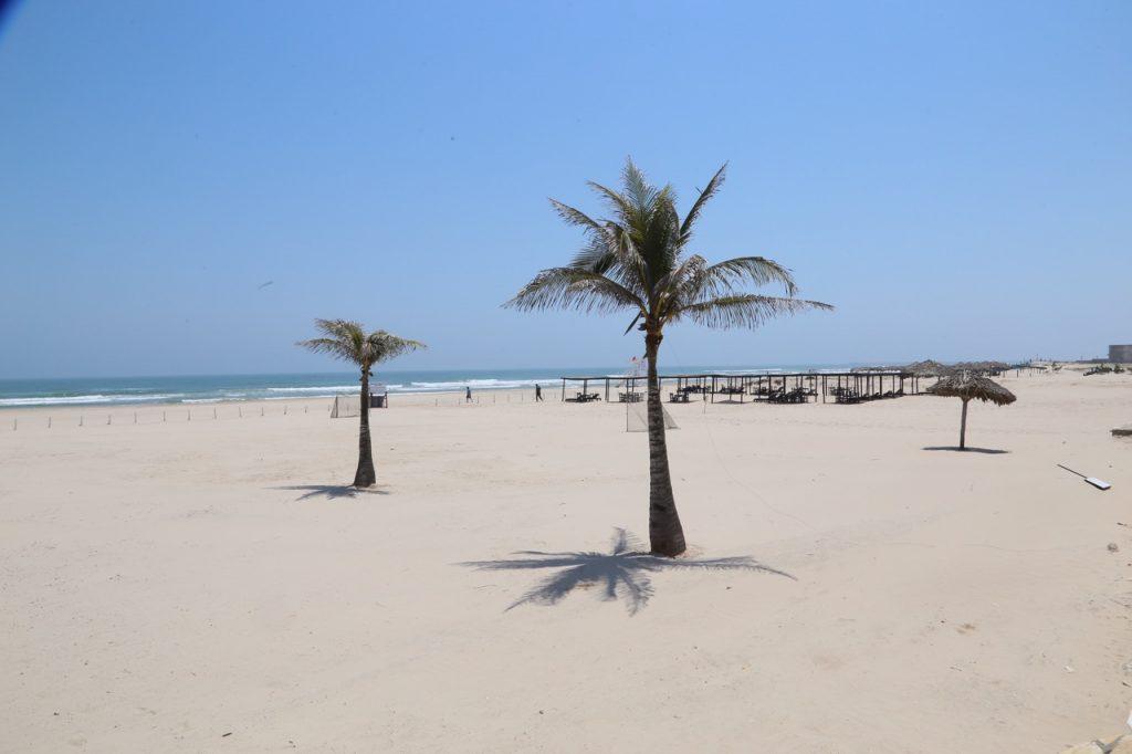 Impulsa Madero acciones ecológicas en playa Miramar
