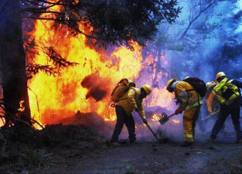 Brigadistas controlan 65 por ciento del incendio en Reserva Sian Ka'an
