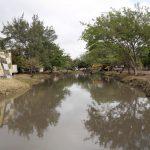 Dan certidumbre a maderenses con limpieza de canales en Madero