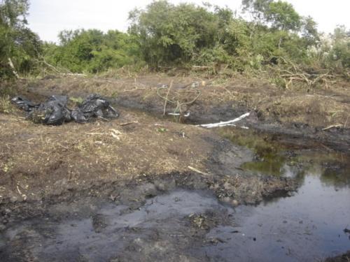 Abren sitio para denuncias por delitos ambientales en Tamaulipas