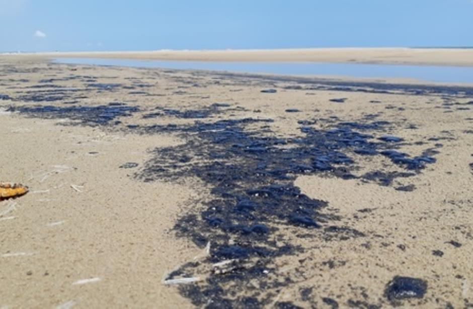 Piden hoteleros investigar manchas de chapo en playa Miramar