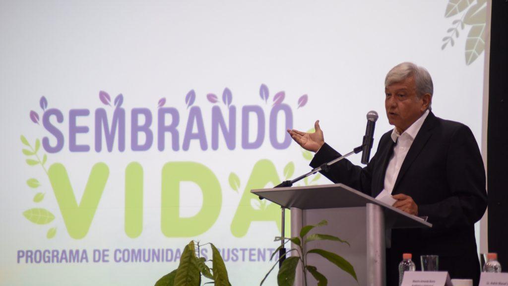 'Sembrando Vida llegará en 2020 a la Costa Chica': AMLO