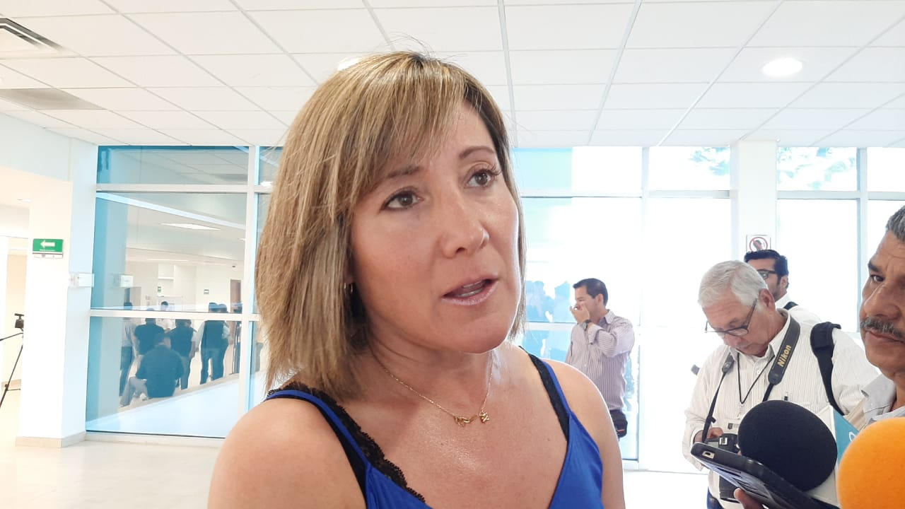 Asegura diputada Rosa González Azcárraga que Narcoterrorismo no afecta a Tamaulipas