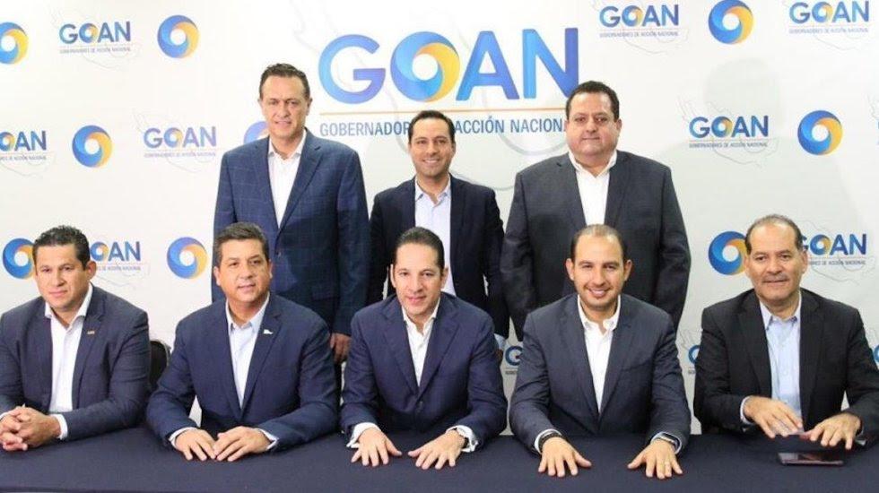 Gobernadores panistas desconocen a Rosario Piedra de CNDH