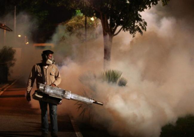 Dengue alcanza máximo histórico en América Latina