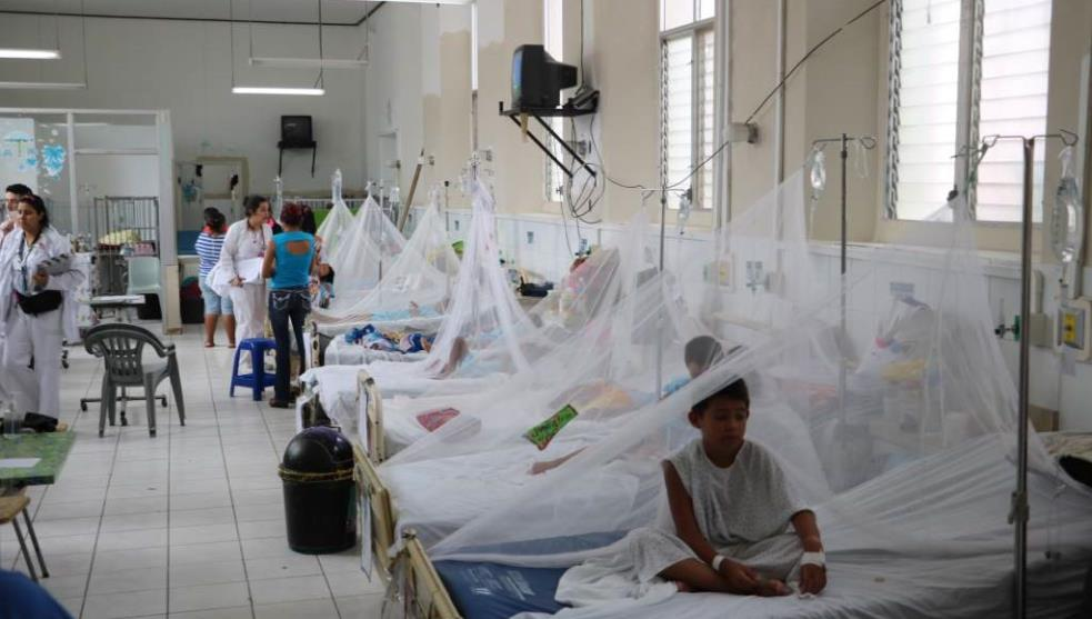 Jalisco supera 11 mil casos confirmados de dengue