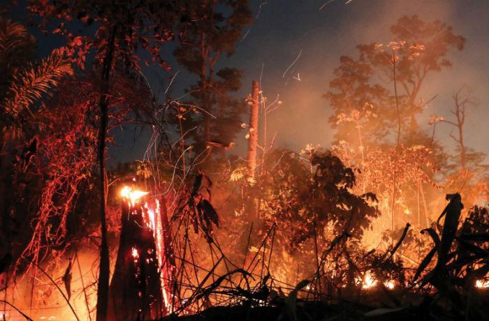 Incendios de 2019 en el Amazonas fueron anormales investigadores
