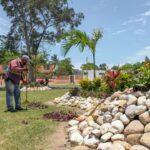 Continúa el Rescate del Sistema Lagunario en Ciudad Madero